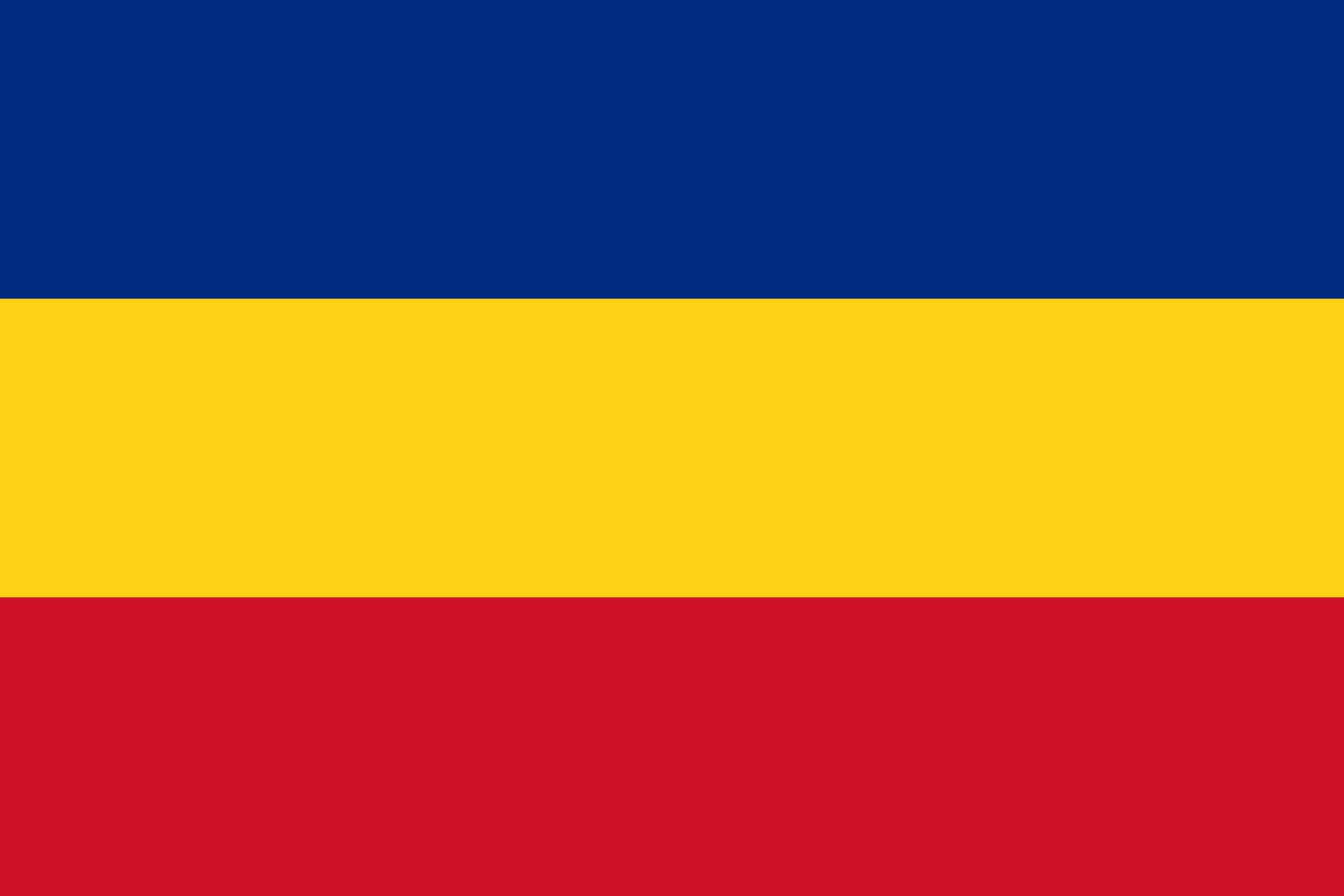 картинки флаг зеленый желтый красный животное появилось столице